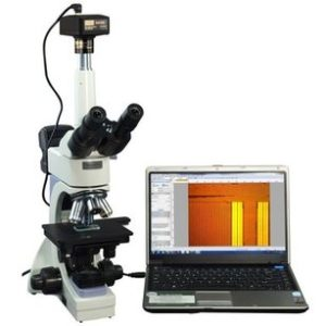 The Best Top Rated Microscope For The Money